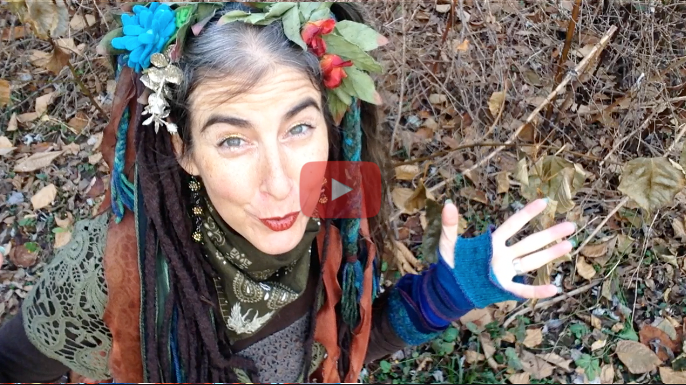 Nov 22nd Full Moon ~ Compassion & Celebration of Growth!