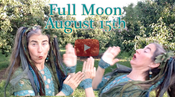 August 15th Full Moon ~ Abundance in our Gardens!
