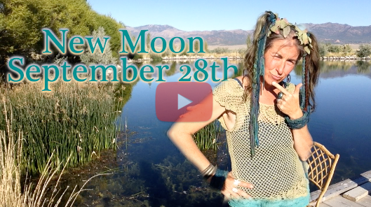 September 28th New Moon ~ What Have You Grown?!