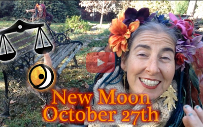 October 27th New Moon ~ Harvest Your Wisdom!