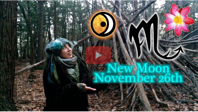November 26th New Moon ~ Preparing your Shadow!