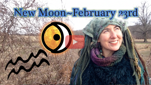 Currents of the Cosmos ~ Feb 23rd New Moon