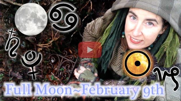 Feb. 9th Full Moon ~ Sap is Rising!