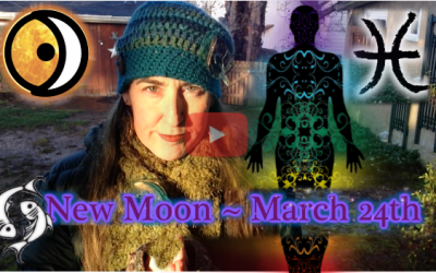 Delicate Compassion ~ March 24th New Moon