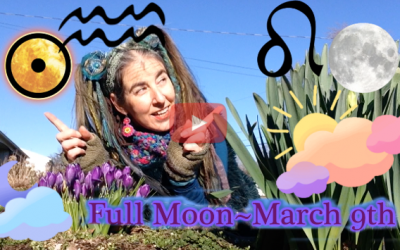 Beauty for Beauty's Sake ~  March 9th Full Moon