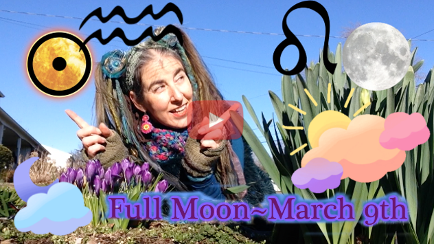 Beauty for Beauty's Sake ~  March 9th Full Moon