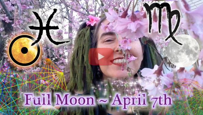 Webs of Life! ~April 7th Full Moon