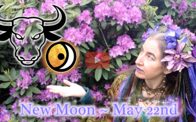 Earth Medicine ~ May 22nd New Moon