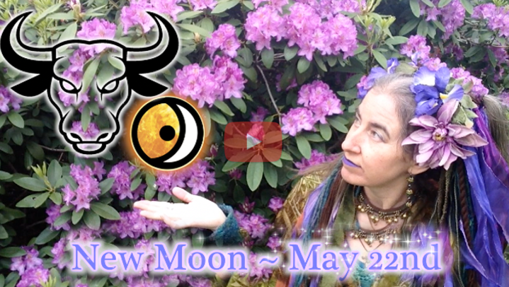 May 22nd New Moon ~ Earth Medicine!