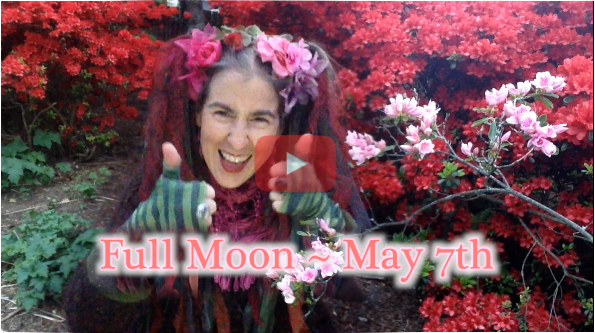 We Begin Again! ~ May 7th Full Moon