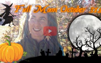 This Wild World! ~ Full Moon Oct 31st