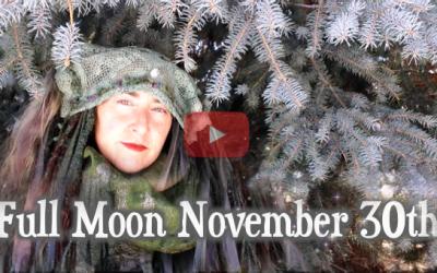 Stillness of Scorpio ~ Full Moon of Nov 30th