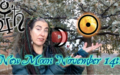 Stepping up upon the Spiral! ~ New Moon Nov 14th